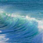 波と戦わずに待つ力