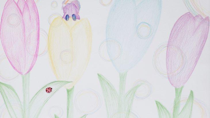 アートソムリエ養成講座「Mさんの色えんぴつセラピー」